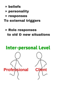 Professional Boundaries and Cultural Bias - Inter-Personal Level