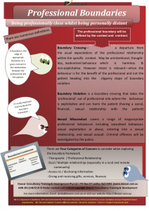 Definitions and language Professional Boundaries poster