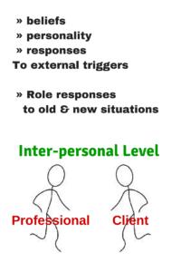 Professional Boundaries and Cultural Bias - Inter-Personal Level